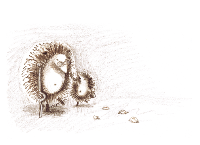 Hedgehog_home from school